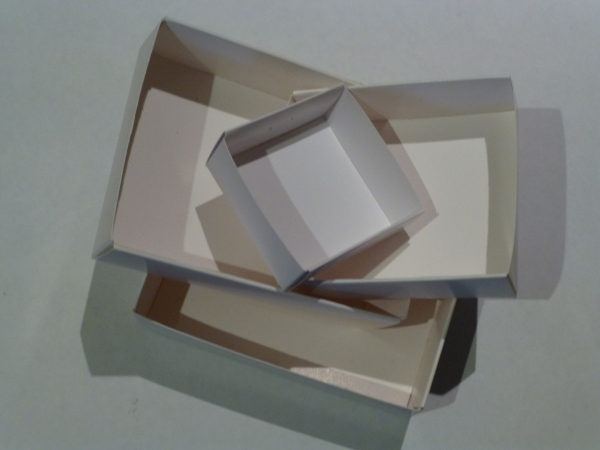 Fold-up specimen boxes